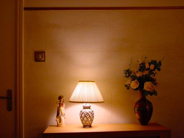 Beautiful Travtino Romano applied to lounge walls